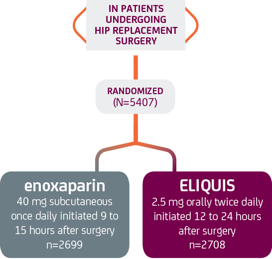 ELIQUIS apixaban And Enoxaparin Hip Replacement ADVANCE-3 Study Arms Graph